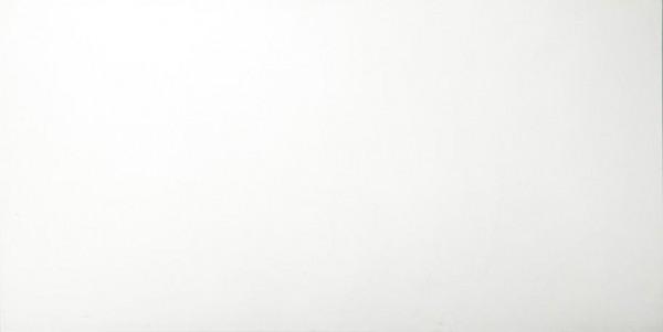 Wandfliese Talia weiß JC4590 45 x 90 cm